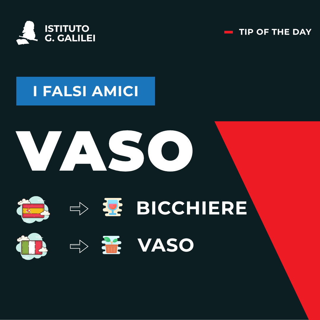 ISTITUTO GALILEI CARDS FASOSO AMIGOS VASO